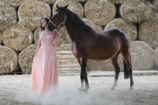 konie hotel wolica